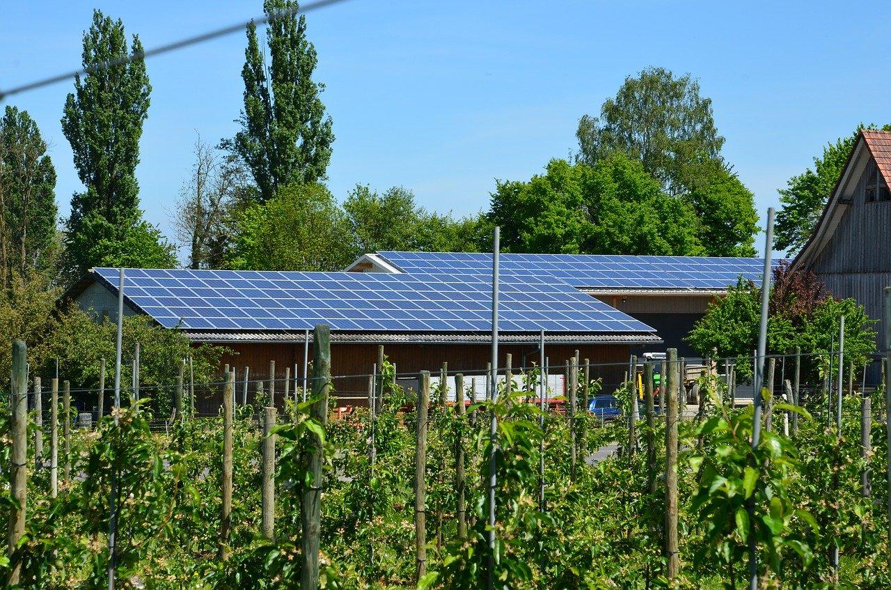 Mycie paneli solarnych